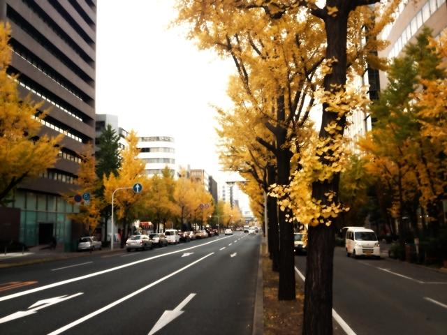 Naniwa-suji in Autumn